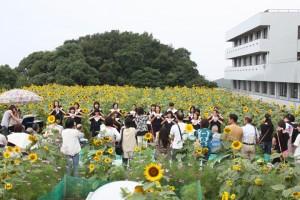 ひまわりコンサート 6